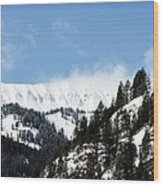 The Artwork Of Winter Wood Print