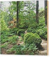 Asian Paths No. 15  Wood Print