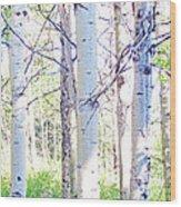 The Aspens #4 Wood Print