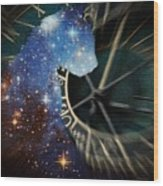 The Astronomer's Cat Wood Print