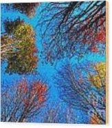 The Autumn Leaves At Potato Creek Wood Print