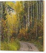 The Autumn Road Wood Print