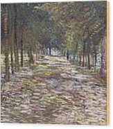 The Avenue At The Park Wood Print