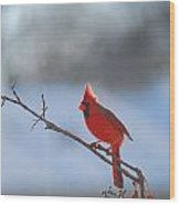 The Awesome Cardinal Wood Print