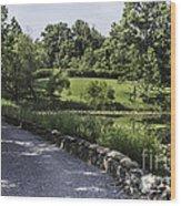 The Back Road Wood Print