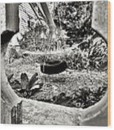 The Backyard Wood Print