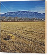 The Bale - Sandia Mountains - Albuquerque Wood Print