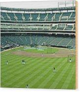 The Ballpark Wood Print