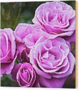 The Barbara Streisand Rose Wood Print