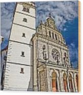 The Basilica In Mary Of Bistrica Wood Print