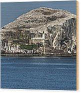 The Bass Rock Wood Print
