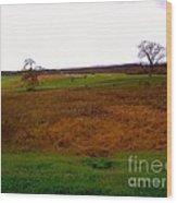 The Battlefield Of Gettysburg Wood Print