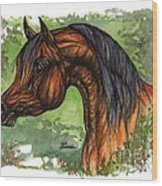 The Bay Arabian Horse 1 Wood Print