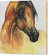 The Bay Arabian Horse 14 Wood Print