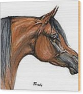 The Bay Arabian Horse 18 Wood Print