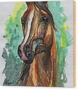 The Bay Arabian Horse 2 Wood Print