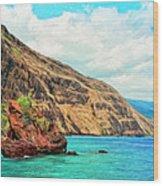 The Bay At Kealakekua Wood Print