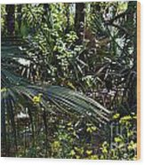The Bayou Wood Print