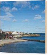 The Beach At Cullercoats Wood Print