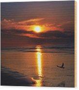 The Beach At Dawn Wood Print