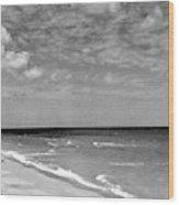 The Beach At Hobe Island Wood Print