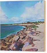 The Beach At Ponce Inlet Wood Print