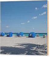 The Beach In Hollywood Florida Wood Print
