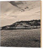 The Beach In Sepia Wood Print