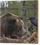 The Bear And Crow Wood Print