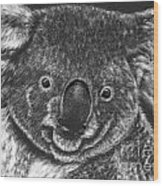 The Bear From Down Under Wood Print