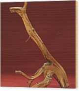 The Beast Wood Print by Pimba