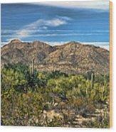 The Beautiful Arizona Desert Wood Print