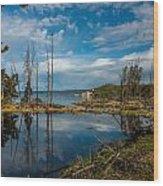The Beautiful Bay Wood Print