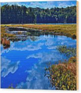 The Beautiful Cary Lake - Old Forge New York Wood Print