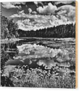 The Beautiful Fly Pond On Rondaxe Road - Old Forge Ny Wood Print by David Patterson