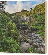 The Beautiful Scene Of The Seven Sacred Pools Of Maui. Wood Print