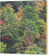 The Beauty Of Autumn Wood Print