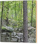 The Beauty Of Boulder Field Wood Print