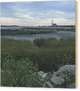 The Beauty Of Connecticut's Shoreline Wood Print