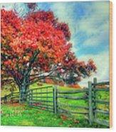 The Beauty Of Fall II - Blue Ridge Parkway Wood Print by Dan Carmichael