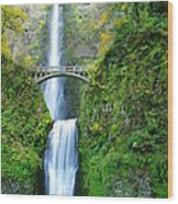 The Beauty Of Multnomah Falls Wood Print