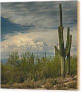 The Beauty Of The Desert Southwest  Wood Print