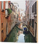 The Beauty Of Venice Wood Print