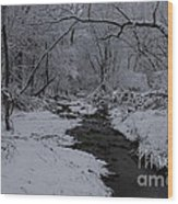 The Beauty Of Winter Wood Print