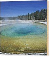 The Beauty Pool Yellowstone Np Wyoming Wood Print