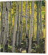 The Beckoning Wood Print