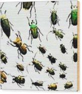 The Beetles Wood Print