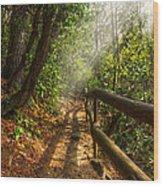 The Benton Trail Wood Print