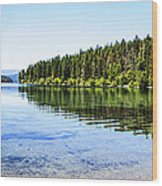 The Best Beach In Glacier National Park Panorama Wood Print by Scotts Scapes