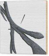 The Betrayal Wood Print